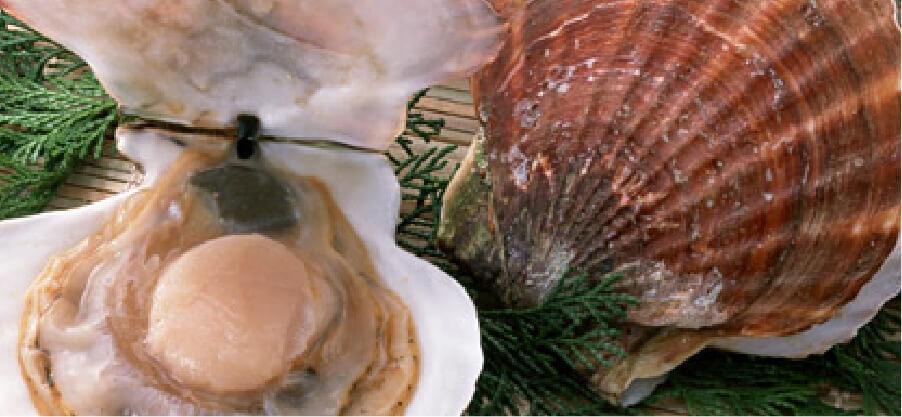 新鮮な魚介メニューの追加オプションの画像
